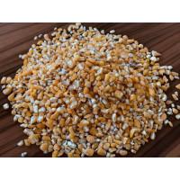 Кукуруза как ингредиент для производства кормов для животных