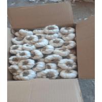 Белый чеснок из Египта, длиной 5 см, отправлен в коробки